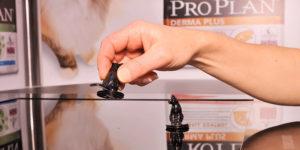 Triporteur digital ProPlan - WIZZ factory, solutions digitales interactives